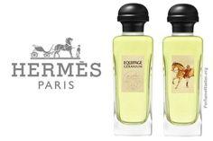 Hermes Equipage Geranium Fragrance - PerfumeMaster.org