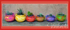 Vasijitas jujeñas + cactus/crasa