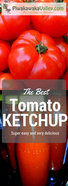 Who doesn't love a good side of homemade tomato ketchup with your dinner? This is a smooth, thick and tasty old fashioned tomato sauce.