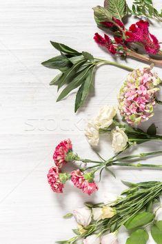The flowers on white wooden background stock photo (c) master1305 (#8289034) | Stockfresh