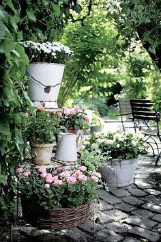Tiered Potted Roses in Planters cottage garden pots Stunning Cottage Style Garden Ideas to Create the Perfect Getaway Spot Garden Cottage, Garden Pots, Potted Garden, Herbs Garden, Garden Living, Willow Garden, Cottage Porch, Bonsai Garden, Orquideas Cymbidium