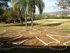 provisório, em construção: Horta Mandala Nova Escola