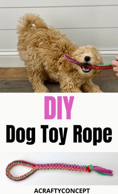 Now you have a use for all that t-shirt yarn! This rope-style dog toy is the perfect DIY dog toy for playing tug-a-war. Diy Rope Toys For Dogs, Yorkshire Terrier, Phteven Dog, Diy Puppy Toys, Cute Dog Toys, Best Dog Toys, Dog Clothes Patterns, Dog Crafts, Toy Puppies