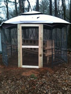 Coop repurposed satellite disk makes a great roof diy for Gazebo chicken coop