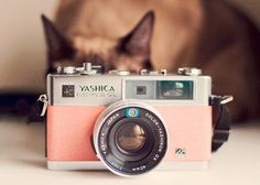 Pink camera Unconventional Registry Ideas For The Modern Wedding) Antique Cameras, Old Cameras, Vintage Cameras, Vintage Polaroid, Pink Camera, Cute Camera, Retro Camera, Polaroid Camera, Camera Gear
