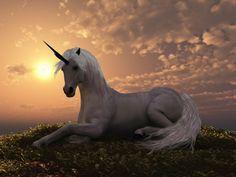 Aquarius (January 20th-February 18th): Unicorn