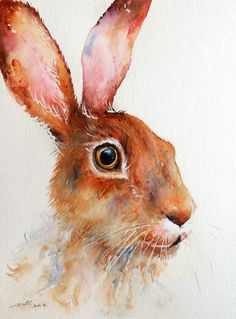 ARTFINDER: Hazelnut Hare by Arti Chauhan -  This is a portrait of a British brown hare in hazelnut color.I love them because they are beautiful, cute looking and lovable creatures with large brown eye...