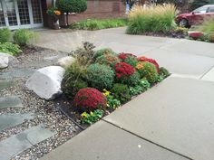A fall planting bed at a commercial property maintained by Barrett Lawn Care. #mums #kale #pansies #fallflowers