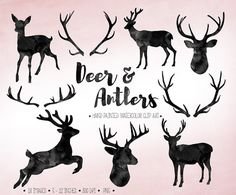 Instant download high quality black watercolr antlers, deer, fawn, deer bust and reindeer silhouettes. You will receive 7 deer and doe