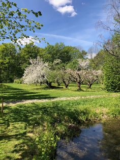 Linderud gård, Oslo. Oslo, Vineyard, Golf Courses, Outdoor, Outdoors, Vine Yard, Vineyard Vines, Outdoor Games, The Great Outdoors