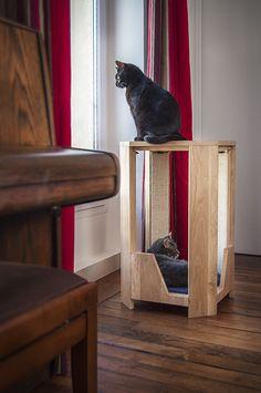 Une console pour que votre chat observe, griffe et se repose