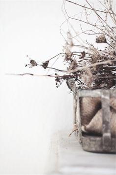 composizione di fiori secchi.beige.grey