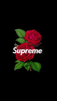 Supreme Rose Wallpaper Iphone Image By Factory Discover All Images Find More Awesome On PicsArt