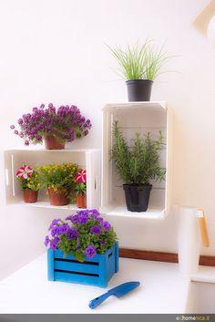 Riciclare cassette della frutta. Un'idea di riciclo creativo che vi farà rinnovare a piccoli costi balconi e terrazze. Scoprite di più sul nostro blog http://www.dhomenica.it/index.php/blog-dh/riciclare-cassette-della-frutta