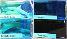 Learning about ocean layers and zones