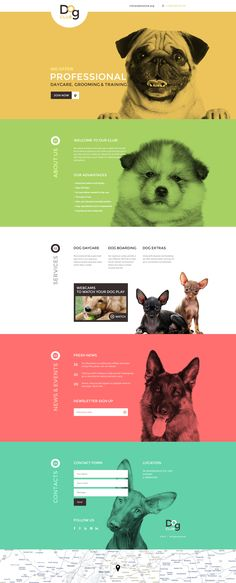 Dog Club Landing Page Template on Behance Landing Page Inspiration, Website Design Inspiration, Graphic Design Inspiration, Website Templates, Template Web, Website Layout, Web Layout, Website Ideas, Interface Design
