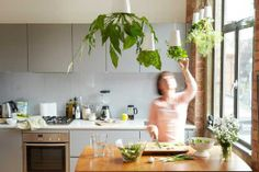 Hanging planters make it easier to grow things indoors and take up less space. These overhead herb planters feed water to the plants little by little so that there is no dripping. Hanging Herbs, Hanging Flower Pots, Hanging Planters, Hanging Gardens, Diy Hanging, Herb Garden In Kitchen, Kitchen Herbs, Green Kitchen, Kitchen Gardening