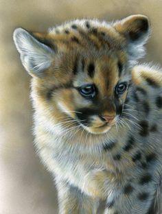 Puma cub painting