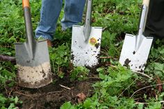 Cwmbran Gardening and Garden Maintenance