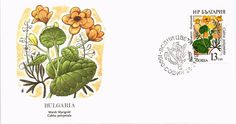 DR JIM STAMPS MARSH MARIGOLD FLOWER FIRST DAY ISSUE BULGARIA COVER 1988