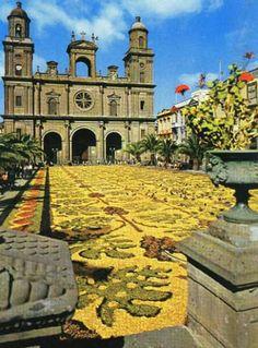 PLAZA Y CATEDRAL DE SANTA ANA 1985