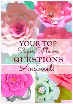 Best answers to all your questions about building giant paper flowers.                                                                                                                                                                                 More