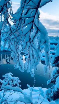Beautiful Photos Of Nature, Beautiful Nature Wallpaper, Nature Images, Amazing Nature, Beautiful Landscapes, Aesthetic Photography Nature, Nature Aesthetic, Nature Photography, Beautiful Winter Scenes