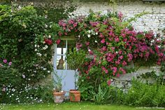 Sur les bords de Loire, la rose a trouvé son royaume dans les jardins de Roquelin. Ici, les plantes s'épanouissent dans un décor de rêve sous le regard de propriétaires passionnés.