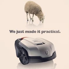 We were given the perfect lawnmower!! We just made it practical. #Cutters #Husqvarna #Lawnmower #automower #sheep #Garden #farms #solarheating #Perfection