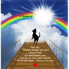 """A personalized pet memorial poem to honor a very special cat who crossed over the """"Rainbow Bridge"""", the Chairman Memorial Poems, Dog Memorial, Rainbow Bridge Dog, Pet Poems, Horse Poems, Losing Your Best Friend, Pet Sitter, Pet Loss Grief, Pet Remembrance"""