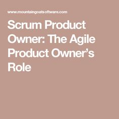 Scrum Product Owner: The Agile Product Owner's Role