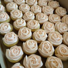 rose (desert ideas wedding)