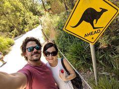 Round Sunglasses, Australia, Fashion, Moda, Round Frame Sunglasses, Fashion Styles, Fashion Illustrations