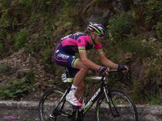 #GirodIitalia 24 maggio 2014. Foto di Leana Maffeo  #bici #bike #ciclismo