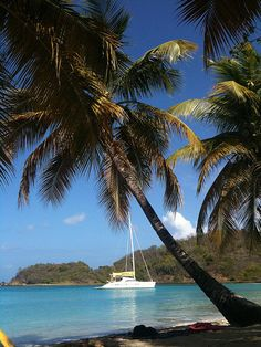 Saint Vincent and the Grenadines Caribbean Southern Caribbean, Caribbean Sea, Great Places, Places To See, Beautiful Places, Bora Bora, Iles Grenadines, World Travel Guide, Tropical Paradise