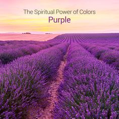 The most spiritual and imaginative color that allows you to tap deeper within yourself. When you see purple, you can better understand your subconscious and see things on a higher level.