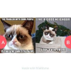 Which Grumpy Cat? Tap to vote http://sms.wishbo.ne/U1ak/vYugUXmG4w