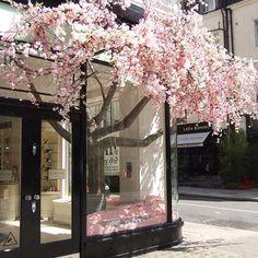 Store deco @clasique_lifestyle