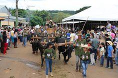 Festas de Carros de Boi: Os carros de boi cantaram  no 16º Encontro de Carr...