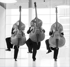 Photos by of Nikolaj Lund \\ In the photograph - musicians from Danish stringed quartet.