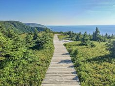With dramatic coastlines, waterfalls, vibrant bays and beaches, it's easy to see why Canada's Cabot Trail is considered one of the world's best road trips. Nova Scotia Travel, Cabot Trail, Canada Travel, Canada Trip, Atlantic Canada, Cape Breton, Prince Edward Island, New Brunswick, Newfoundland
