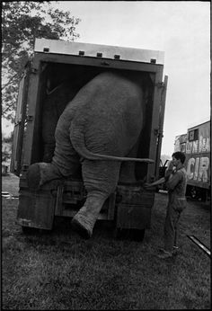 """well first I just laid out a trail of peanuts see, and then""     Jill Freedman, Circus Days, 1971. Courtesy of Higher Pictures"