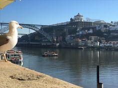 Porto#portugal