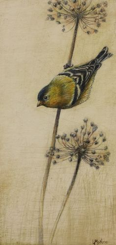 Goldfinch ©2011 Lori McNee 12x6 mixed media drawing on board  http://lorimcnee.com