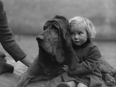 bloodhound and baby Best Friend's! I Love Dogs, Puppy Love, Big Dogs, Mans Best Friend, Best Friends, True Friends, Friends Leave, Animals For Kids, Cute Animals