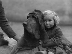 IlPost - Il bracco e la bambina - Un Cane di Sant'Uberto (detto anche Bloodhound) viene coccolato da una bambina, nel 1935 (William Vanderson/Fox Photos/Getty Images)