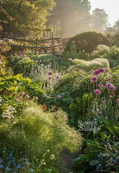 Garden Wallpaper, Look Wallpaper, Nature Aesthetic, Garden Types, Garden Cottage, Fairytale Cottage, Meadow Garden, Forest Garden, Romantic Cottage