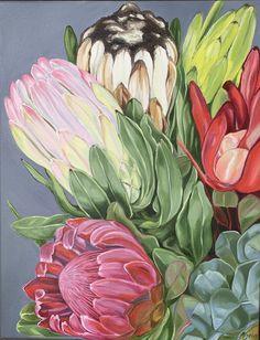 """A Plethora of Proteas - FRAMED"" by Alicia Cornwell. Paintings for Sale. Protea Art, Protea Bouquet, Illustrations, Illustration Art, Australian Native Flowers, Floral Artwork, Linocut Prints, Botanical Art, Online Art Gallery"