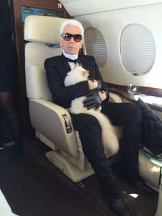 Cara Delevingne and Gigi Hadid lead the fashion community to honour the life of Karl Lagerfeld Karl Lagerfeld Choupette, Fendi, Mode Origami, Turkish Van Cats, Karl Otto, International Cat Day, Harper's Bazaar, Cat People, Chanel Fashion
