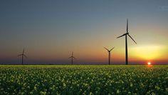 January 14 Green Energy News